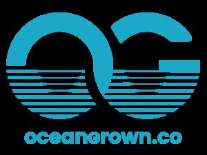 2021_OG-LOGO-BLUE_640x480